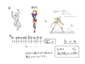 BlazBlue Bullet Motion Storyboard 19(B).png